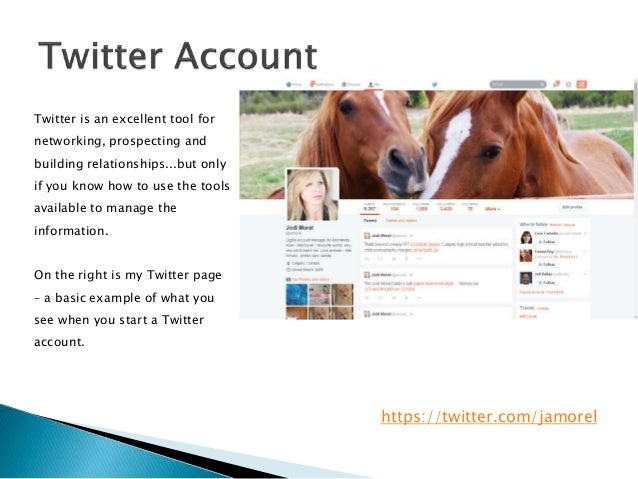 Twitter Information Management  Slide 3
