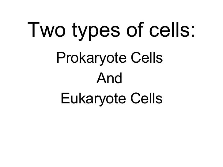 Two types of cells: Prokaryote Cells  And  Eukaryote Cells