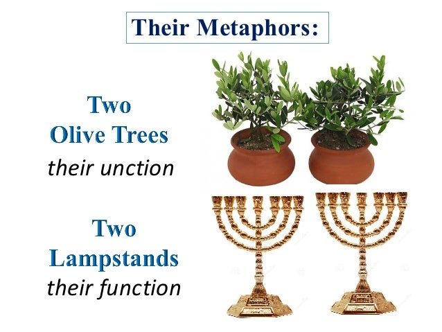 Their Metaphors: their unction their function