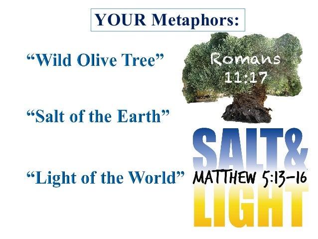 YOUR Metaphors: Romans 11:17