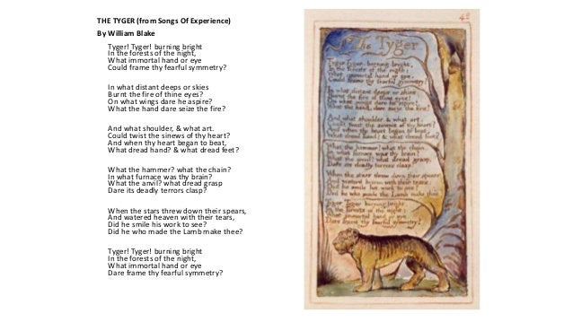 william blakes use of symbolism in the poems the lamb and the tyger