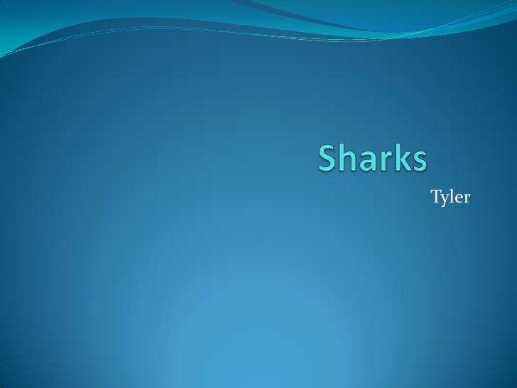 Sharks<br />Tyler<br />
