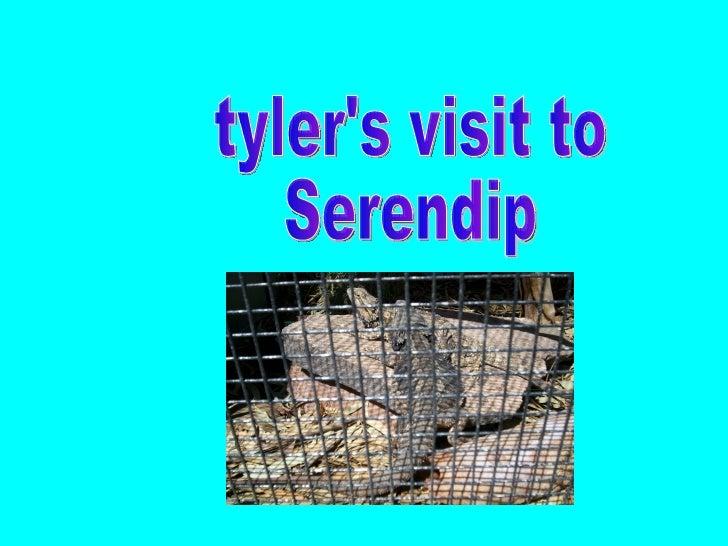 tyler's visit to Serendip
