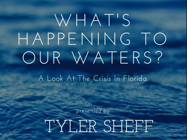 TYLER SHEFF WHAT'S HAPPENING TO OUR WATERS? A Look At The Crisis In Florida presented by: