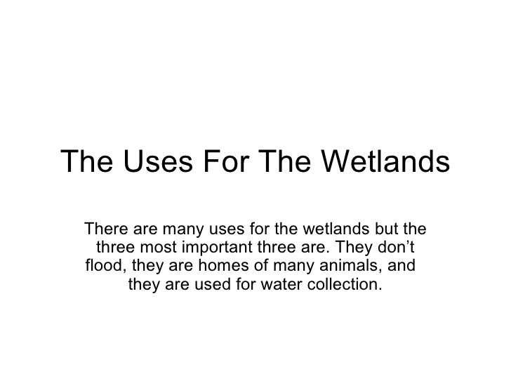 The Uses For The Wetlands There are many uses for the wetlands but the three most important three are. They don't flood, t...