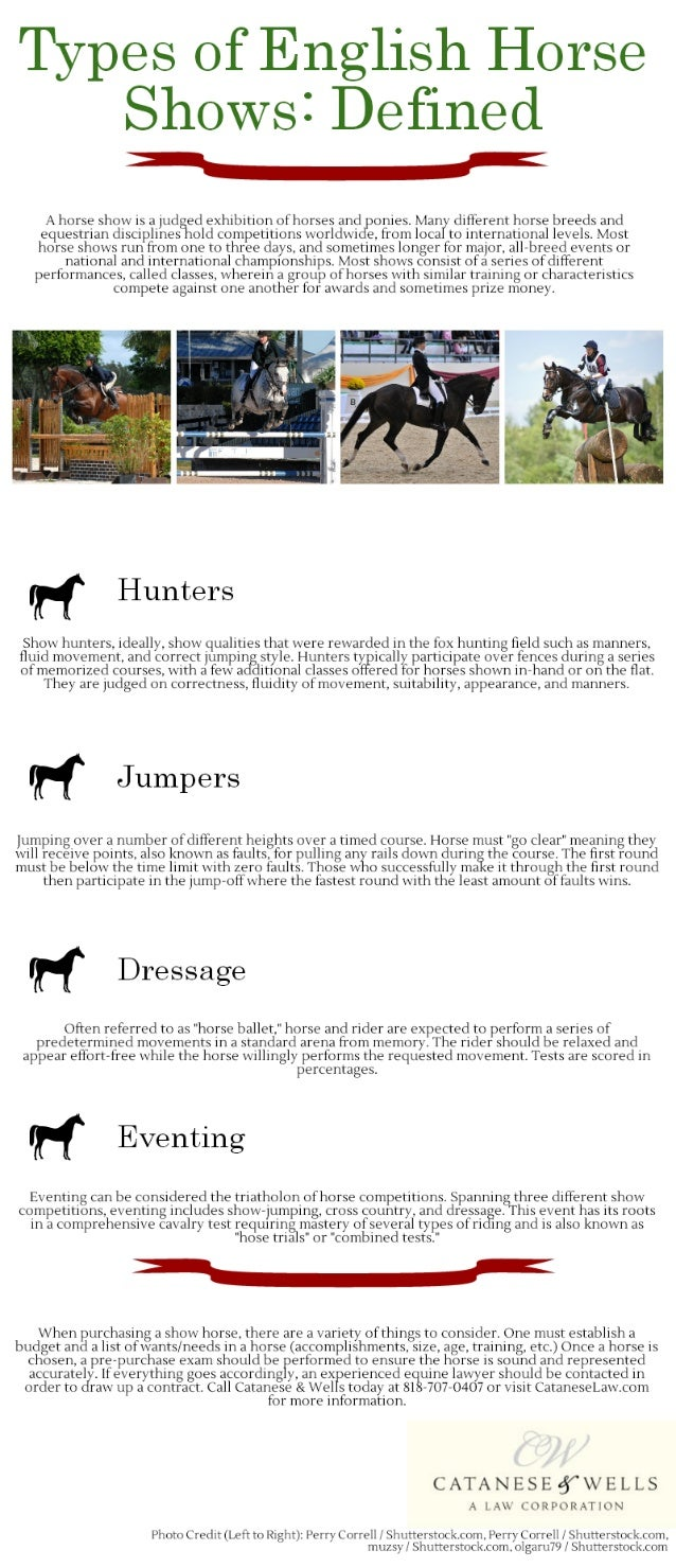 Types of English Horse Shows: Defined