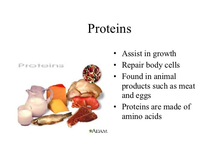 Types Of Nutrients