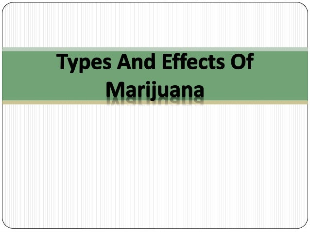 a research on marijuana history and effects Research to date shows that marijuana meets neither of these criteria the featured documentary covers some of the most recent research on the medical applications of marijuana in light of recent science, it's clear that marijuana does not meet schedule 1 criteria and it's high time to revise this classification.