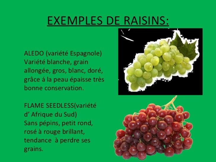 EXEMPLES DE RAISINS: ALEDO (variété Espagnole) Variété blanche, grain allongée, gros, blanc, doré, grâce á la peau épaisse...