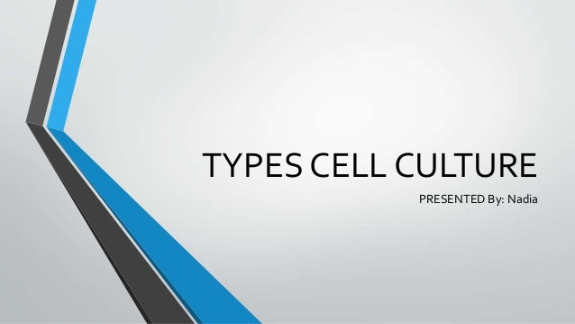 TYPES CELL CULTURE PRESENTED By: Nadia