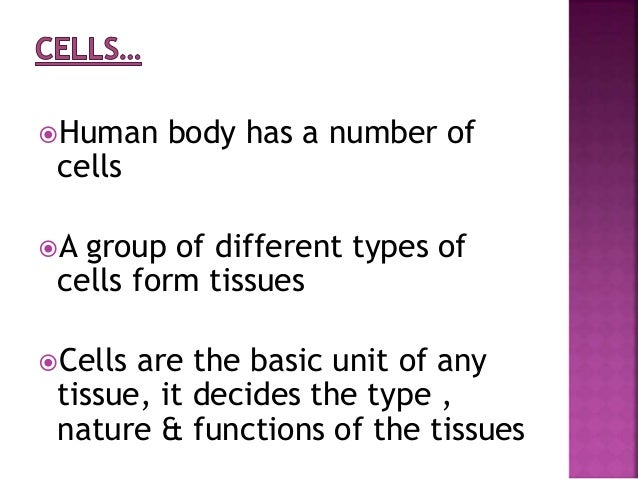 the different types of cells It's made up of several types of cells and proteins that have different jobs to do in  fighting foreign invaders in this section, we'll take a look at the.