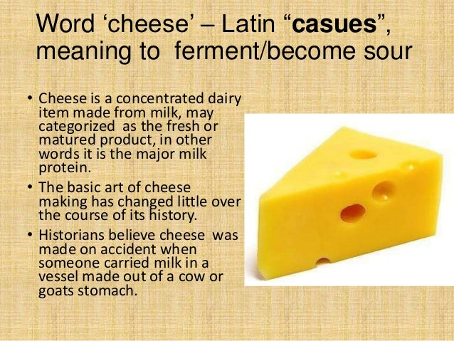 Types Of Cheese By Pauly