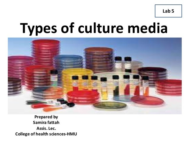 Types of culture media Prepared by Samira fattah Assis. Lec. College of health sciences-HMU Lab 5