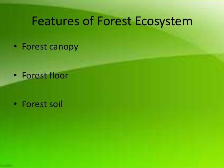 Photosynthesis in Aquatic Plants