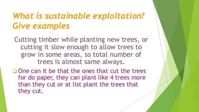 Types Of Forest Sustainable Exploitation Second Block Test
