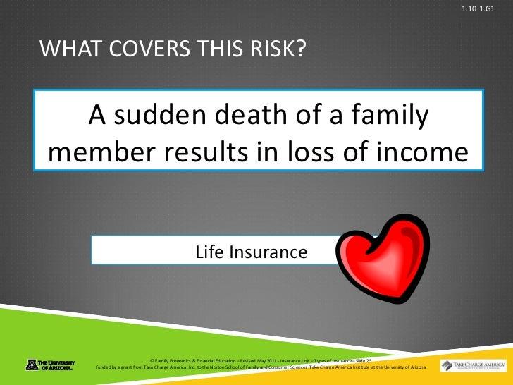 Types Of Insurance Power Point Presentation 1 10 1 G1
