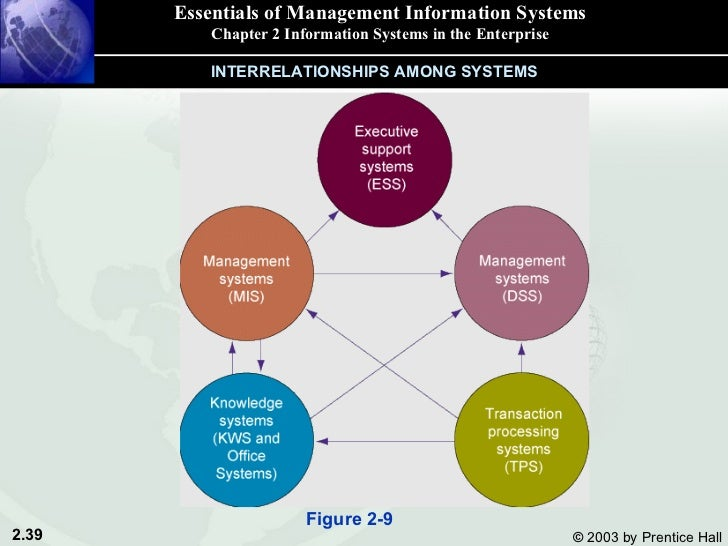 management information systems essays