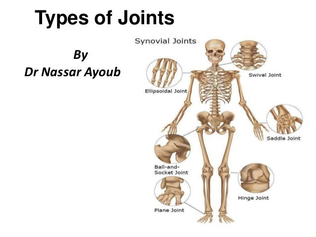 Awe Inspiring Types Of Joints Wiring Cloud Hisonuggs Outletorg