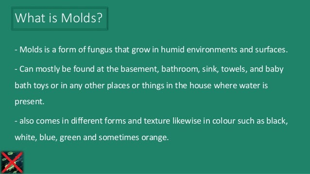 - Molds is a form of fungus that grow in humid environments and surfaces. - Can mostly be found at the basement, bathroom,...