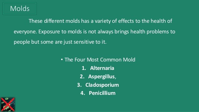 These different molds has a variety of effects to the health of everyone. Exposure to molds is not always brings health pr...