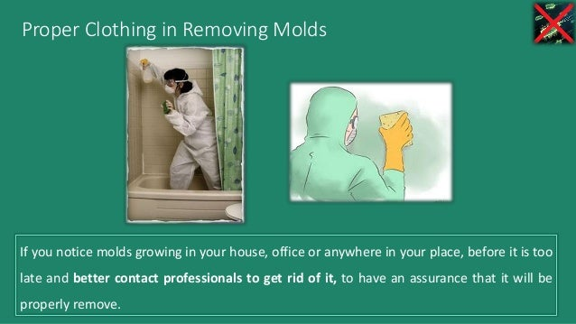Proper Clothing in Removing Molds If you notice molds growing in your house, office or anywhere in your place, before it i...