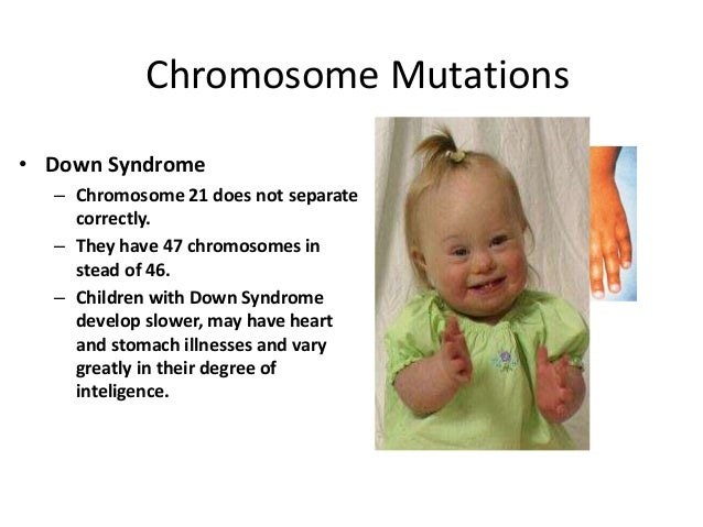 mutations their types and effects Types of mutations: structure and information mutations can be classified in terms of the structural changes they cause, and in terms of the changes in the.