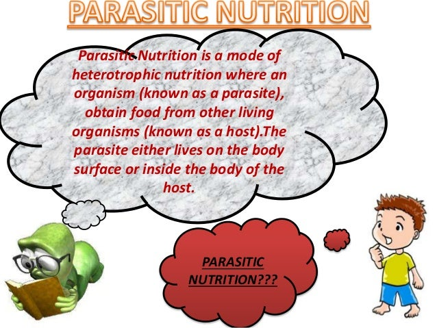 Types of nutrition and human digestion