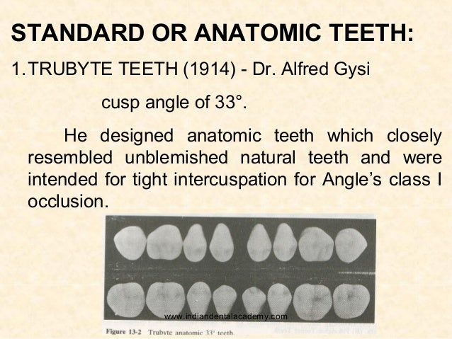 Types of posterior teeth /fixed orthodontics courses