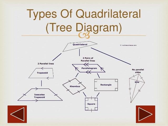 Diagram Of Quadrilaterals - Auto Electrical Wiring Diagram •