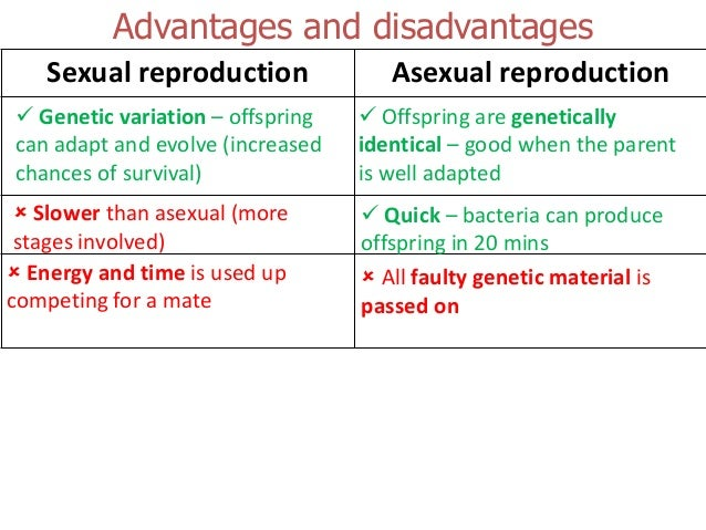 Give two advantages and two disadvantages of sexual reproduction