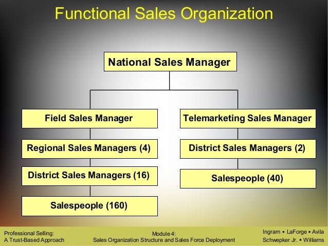 types of sales organisation structure