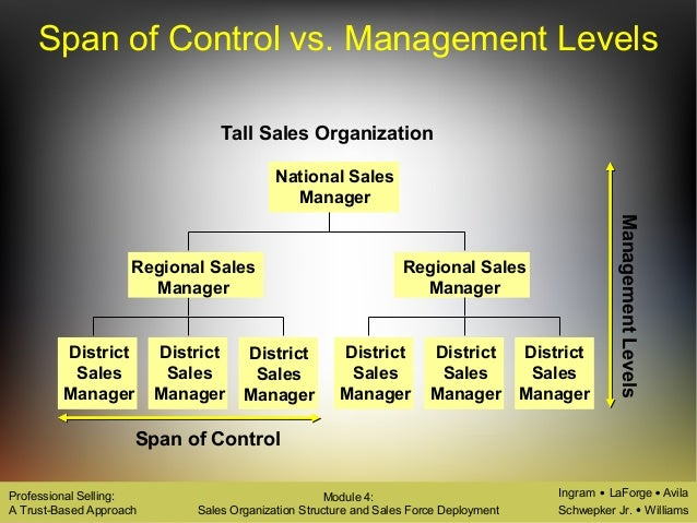 types of sales organisation structure Types of organizational culture  an example of a company that follows this structure is worldstrides and more specifically their sales department.