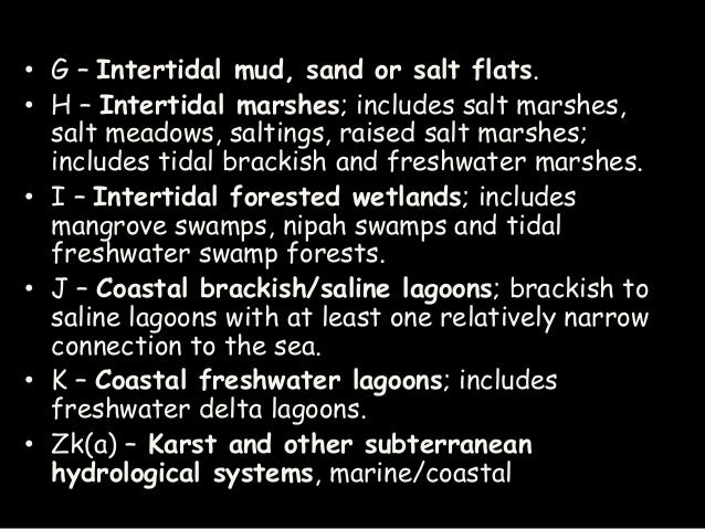 Types Of Wetlands And Wetland Formation