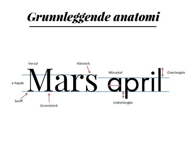 Mars april Grunnleggende anatomi Seriff   x-‐høyde   Grunnstrek   Hårstrek   Underlengde   Overlengde   Versal...