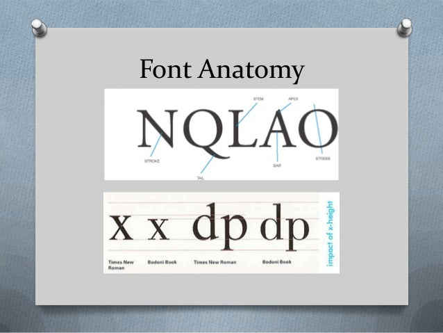 Font Anatomy