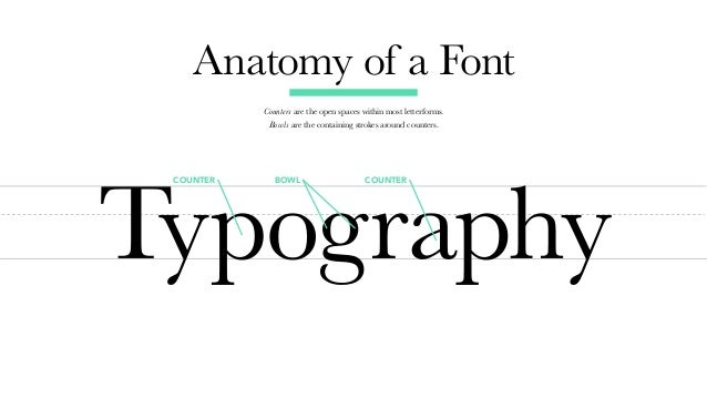 typecurious a typography crash course