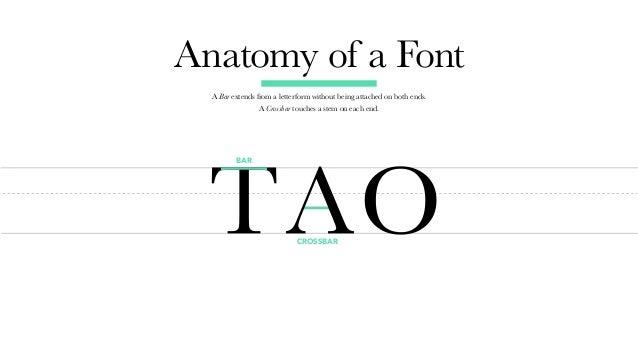 Typecurious A Typography Crash Course