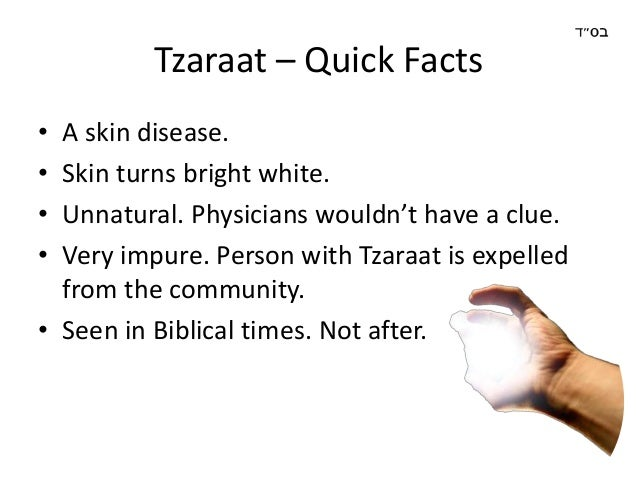 Image result for tzaraat images