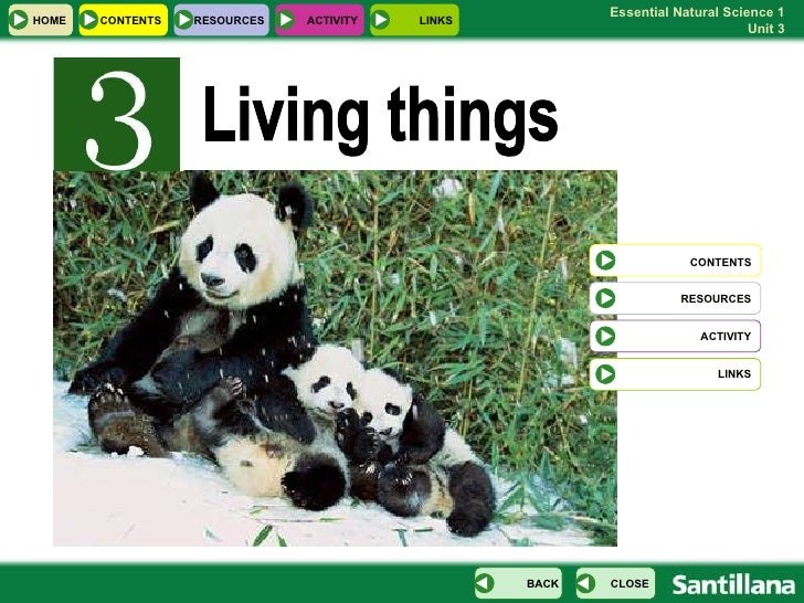 Living things HOME RESOURCES RESOURCES CONTENTS CLOSE BACK CONTENTS ACTIVITY LINKS ACTIVITY LINKS