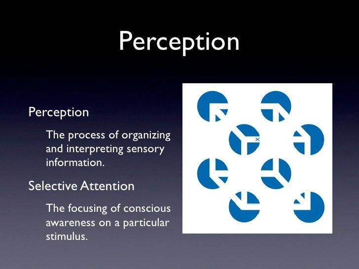 attention and perception relationship