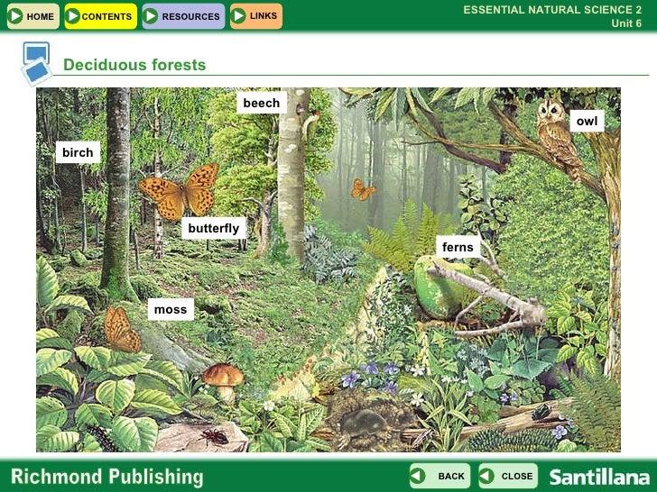 U06 Ecosystems