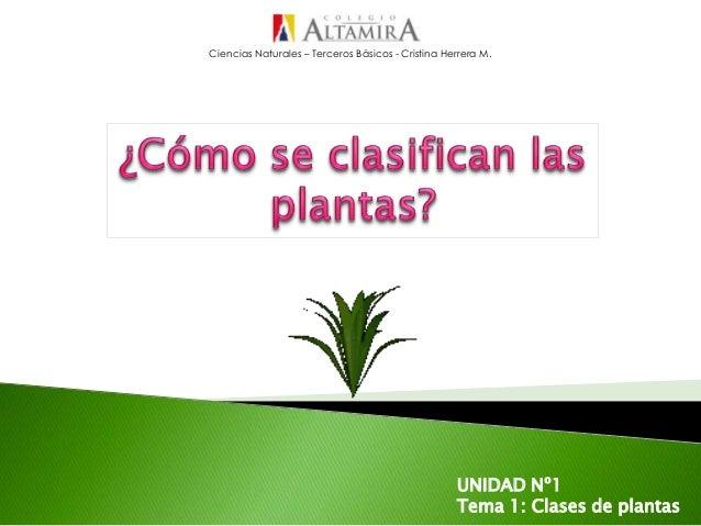 Ciencias Naturales – Terceros Básicos - Cristina Herrera M.UNIDAD Nº1Tema 1: Clases de plantas