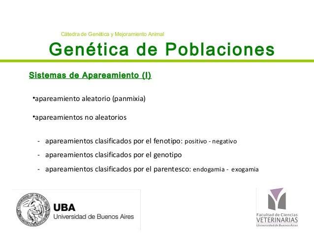 Genética de PoblacionesSistemas de Apareamiento (I)Cátedra de Genética y Mejoramiento Animal•apareamiento aleatorio (panmi...