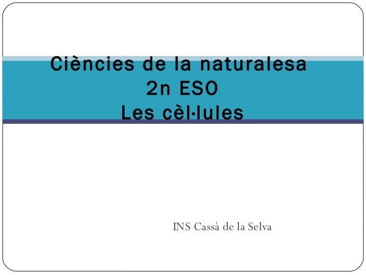 Ciències de la naturalesa         2n ESO       Les cèl·lules           INS Cassà de la Selva