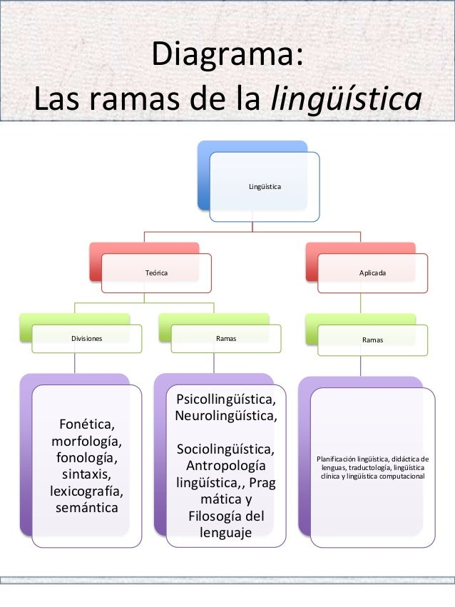 Bilinguismo  a importancia da segunda língua para vida 8