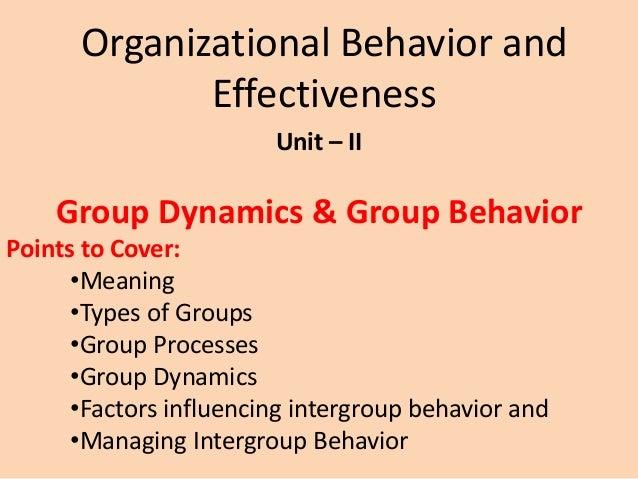 intergroup dynamics of an organisation