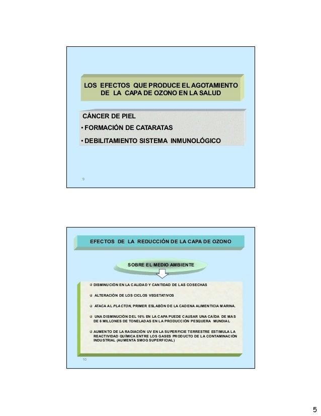 5 9 CÁNCER DE PIEL • FORMACIÓN DE CATARATAS • DEBILITAMIENTO SISTEMA INMUNOLÓGICO LOS EFECTOS QUE PRODUCE EL AGOTAMIENTO D...