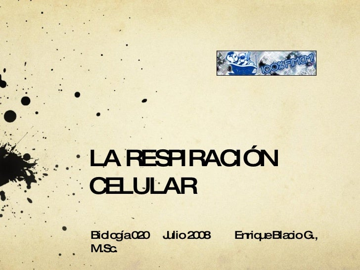 LA RESPIRACIÓN CELULAR Biología 020 Julio 2008 Enrique Blacio G., M.Sc.