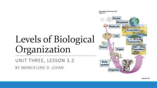 Levels of Biological Organization UNIT THREE LESSON 3.2 BY MARGIELENE D. JUDAN ...