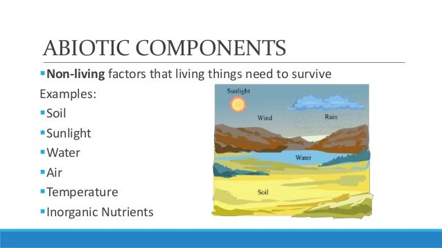 unit 5, lesson 5.2- biotic and abiotic components